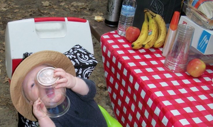 "alt=""baby chewing on plastic cup at picnic lunch"""